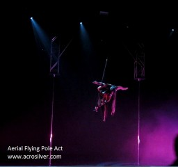 Sylvia Louis Aerial Flying Pole 5
