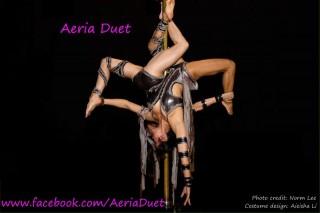 Aeria Duet Pole Promo