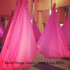 teaching flyoga 2015