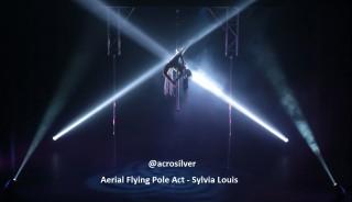 Sylvia Louis Aerial Flying Pole 4